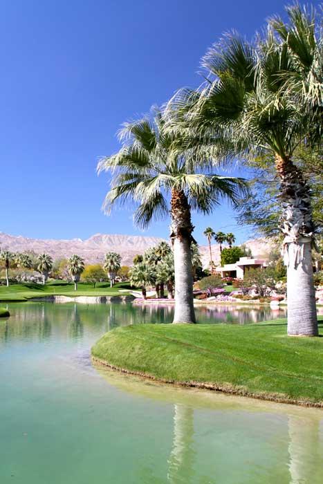 Image Asset 6 Palm Springs Real Estate