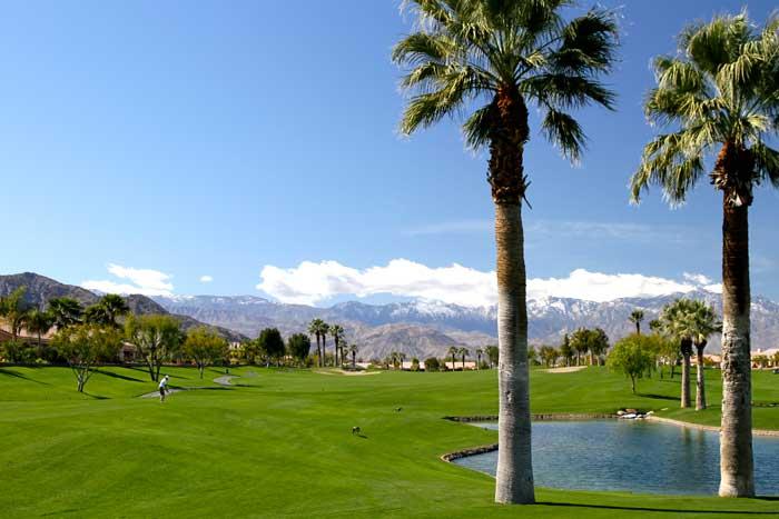 Image Asset2 1 Palm Springs Real Estate