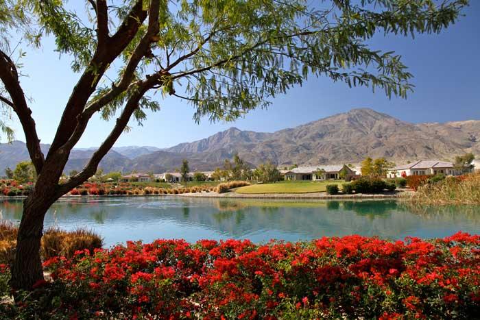Image Asset 4 Palm Springs Real Estate